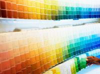 img-color.jpg